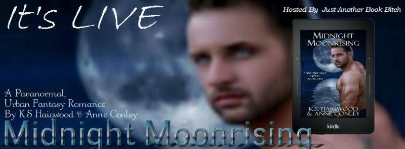 Moonrising Banner